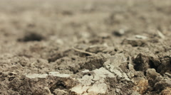 Focus racking foreground to background of plowed soil on agriculture field - stock footage