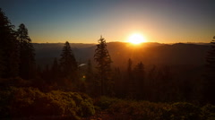 Beautiful Sunrise Over A Scenic Forest - stock footage