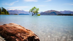 Wanaka Tree New Zealand Landscape Time Lapse Stock Footage
