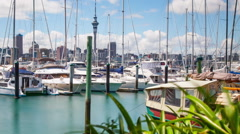 Auckland Marina Time Lapse Stock Footage