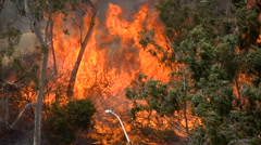 Brush Fire Los Angeles Stock Footage