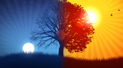 Tree and Sun-Moon Background Stock Footage