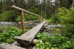 Log Bridge Crosses Rushing Creek - stock photo