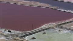 Sea Salt Plant Stock Footage