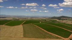 Vineyards Near Darling Stock Footage