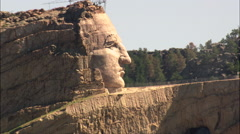 Crazy Horse Stock Footage