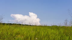 Tame laps. The cloud floats down the hill. Stock Footage