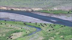 Soda Buutte Creek And Buffalo Stock Footage