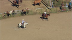 Getting Ready For The Rodeo At Lodge Grass Stock Footage