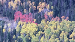Fall Colours In Medicine Bow Mountains Stock Footage
