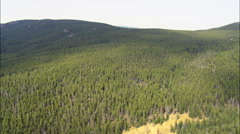 Big Horn National Forest Stock Footage