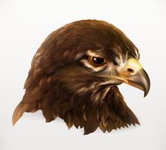 Eagle head, realistic vector illustration Stock Illustration