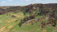Fire Damage In Nebraska National Forest Stock Footage