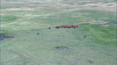 Aerial View G2, Nebraska, United States Stock Footage