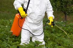 pesticide spraying. non-organic vegetables. - stock photo