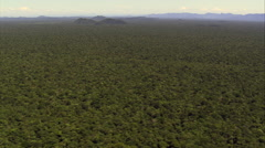 Flat Section Of Rain Forest In Jureia Itatins Stock Footage