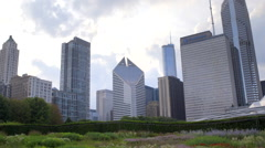 Chicago Skyline with Garden Stock Footage