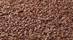 Rotating raw buckwheat. Spinning closeup dry uncooked seeds Arkistovideo