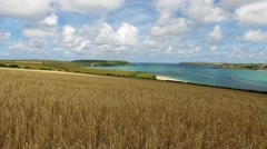 Of turquoise river estuary, with sandy beaches and boats, over a wheat field. Stock Footage
