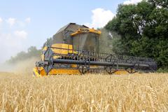 Combine harvester working on a wheat field Stock Photos