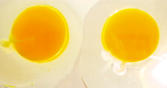 Two Raw Egg Yolks Side by Side in 4K Stock Footage