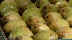 Pears being labeled Stock Footage