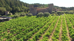 4K aerial view above napa winery castle castello di amorasa Stock Footage
