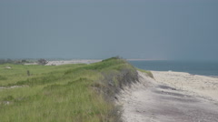 Ho Hum grass and beach on Fire Island on a sunny day Stock Footage