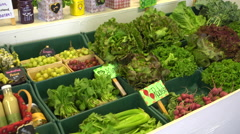 Lettuce greens at a farmers market - stock footage