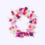 flat lay greeting wreath of colorful fuchsia flower with place for your text  - stock photo