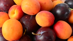 Apricots and plums, fruit. Stock Footage