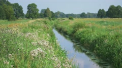 Small river crossing green meadow. Spring european landscape. Stock Footage