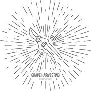 Winemaking, wine tasting logotype design concept Stock Illustration