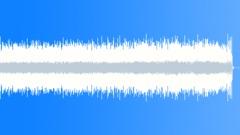 Summer Ukelele - stock music
