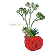 Beautiful succulent plants in a shell - stock illustration
