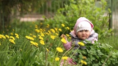 Little girl sitting in the green grass and played with yellow daisies. Stock Footage