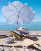 Vacation  background with seashell,umbrella, turtle and beach accessories Stock Illustration
