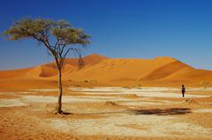 Wandering in the desert Stock Photos
