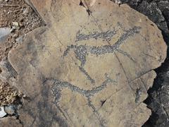 Running animals petroglyphs carved in rocks - stock photo