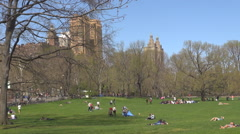 Tourist people enjoy relax on green grass in Central Park in New York City town  Stock Footage