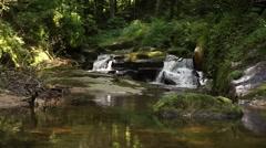 Grobbachtal in the Blackforest Stock Footage