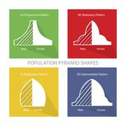 The 4 Types of Population Pyramids Graphs Stock Illustration