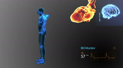 Human Body,Heart,Brain and Nervous System Monitoring - stock footage