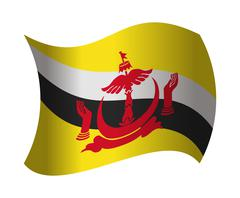 Brunei flag waving in the wind Piirros