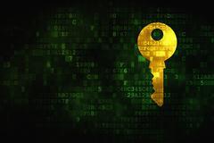 Security concept: Key on digital background Stock Illustration