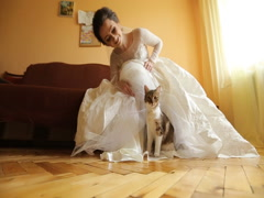 Bride with her beloved cat on your wedding day Stock Footage