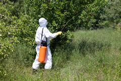 pesticide spraying. non-organic fruits. - stock photo