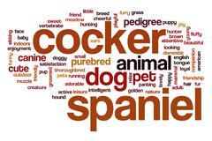 Cocker spaniel word cloud concept Stock Illustration