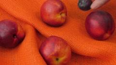 Peach nectarine isolated on orange background Stock Footage