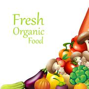 Papaer design with fresh vegetables Stock Illustration